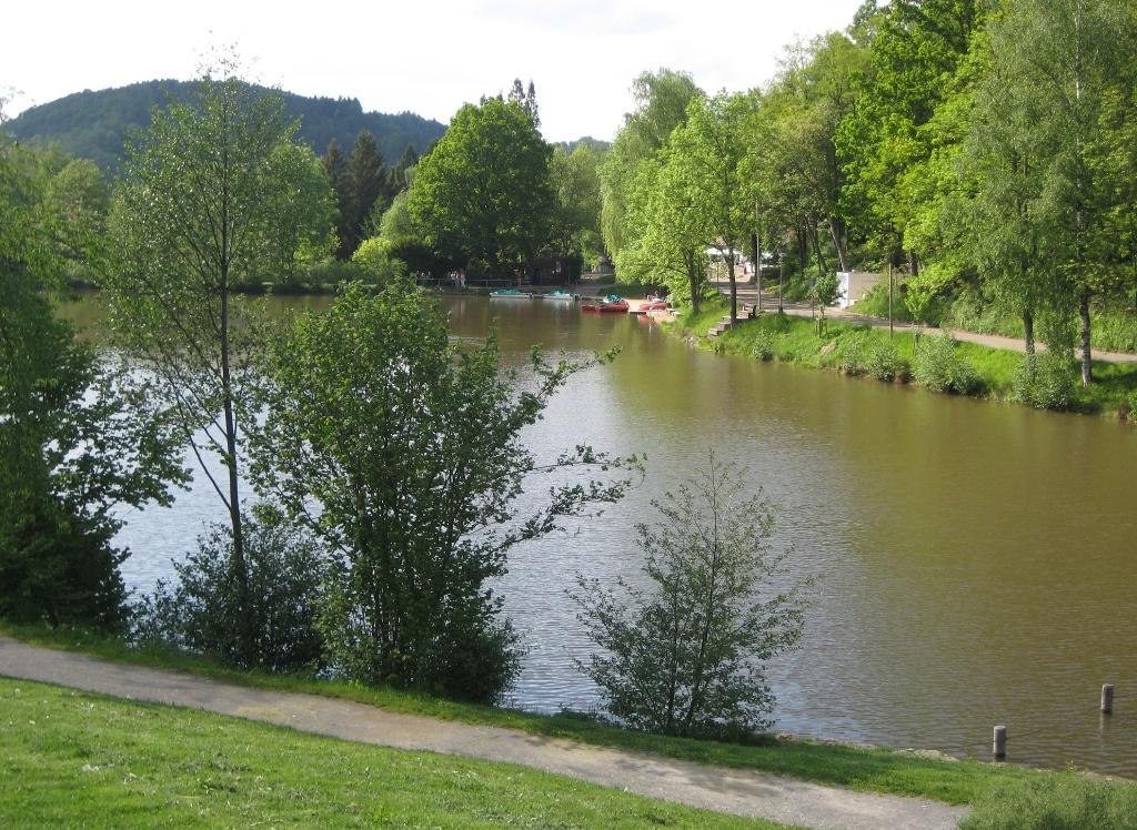Waldsee 11 - Blick über den See zum Nordufer