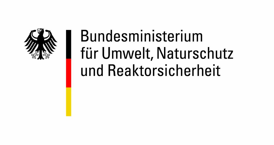 BMU Logo