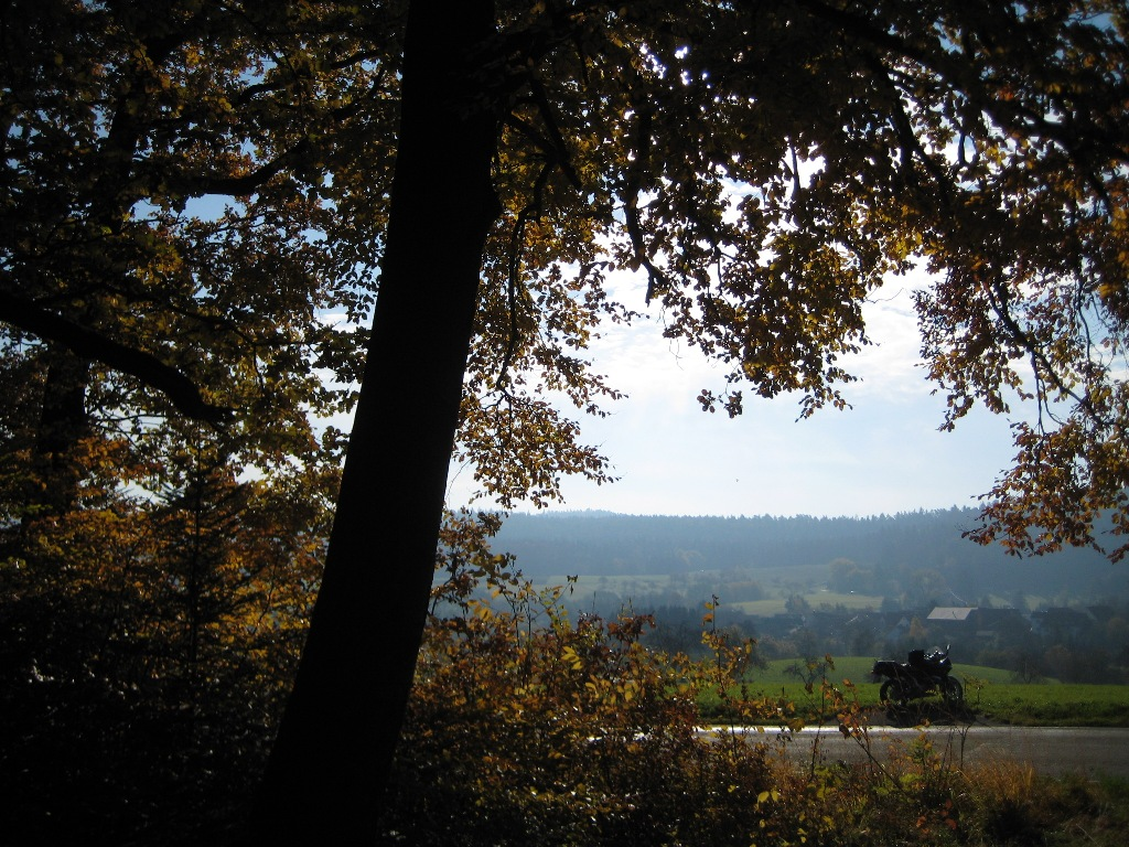 Herbstlicher Blick aus dem Wald