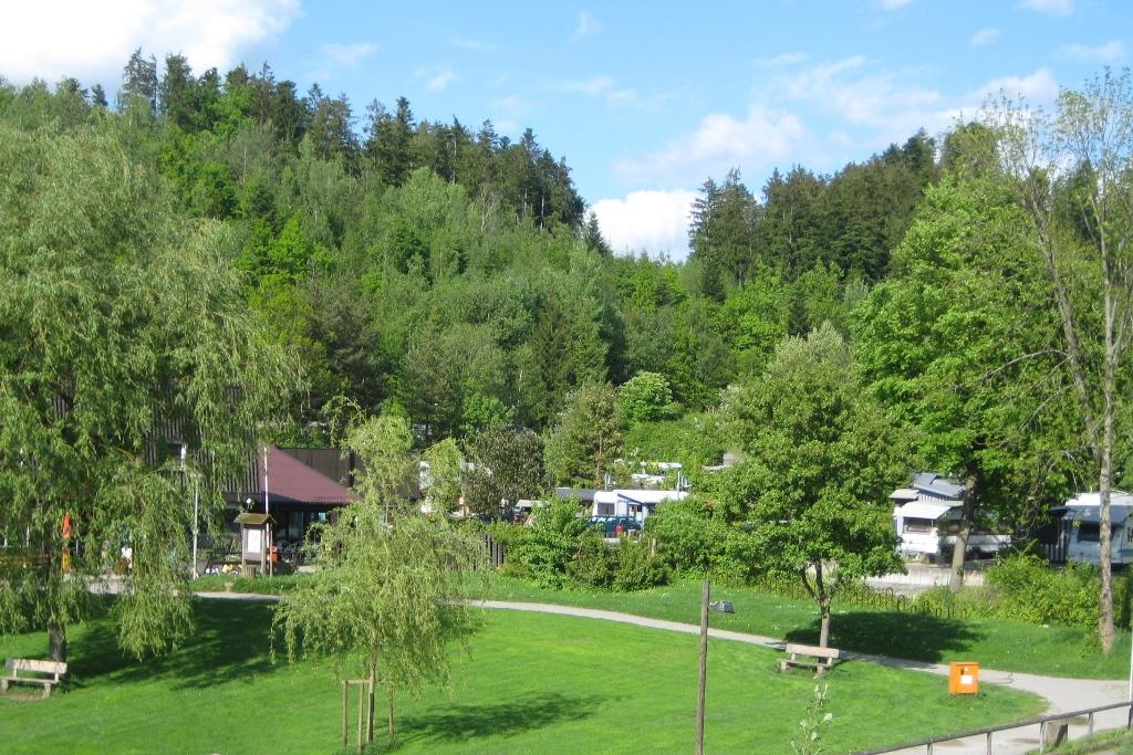 Campingplatz Waldsee - Blick auf Liegewiese und Campingplatz