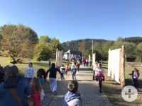 Ausstellung Wimmelweide in Murrhardt