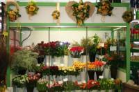 Pflanzenparadies Murrhardt