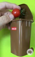 Tomate + Biotonne