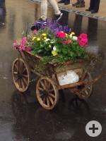 Blumenwagen2