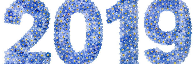 Numeral 2019 from blue forget-me-not flowers, isolated on white background