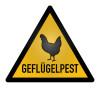 Geflügelpest ©winterbilder - stock.adobe.com