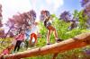 Eine Gruppe von Kindern balanciert über einen Baumstamm Copyright:Sergey Novikov (SerrNovik) ripicts.com
