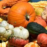 Herbstmarkt (c) Fotolia