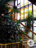 Bodelschwingh-Schule