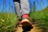 Wanderer unterwegs