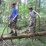 Klettern, schwingen, balancieren - Bewegt durch den Wald