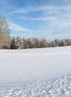 Hinterbüchelberg_Winter 2015