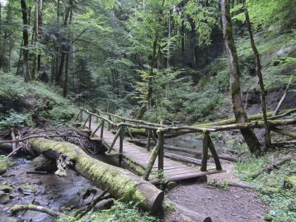 Naturpark aktiv 2019 xxx
