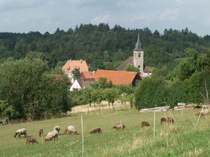 Blick auf die Kirche von Kirchenkirnberg