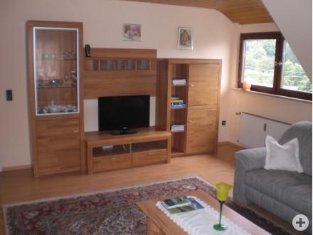Wohnzimmerschrank_mit_SAT-TV